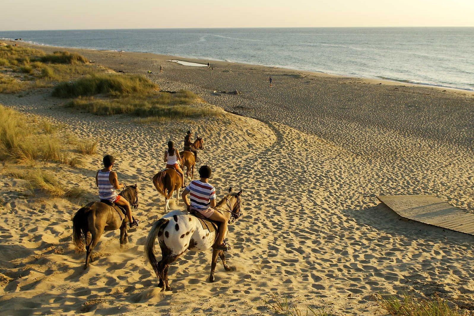 horse riding on sandy beach